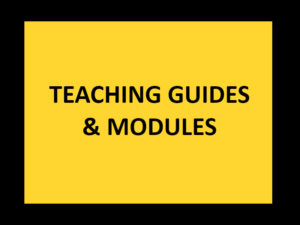 AEAM - TEACHING GUIDES AND MODULES