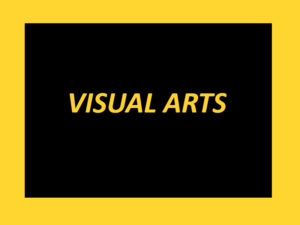 AEAM - VISUAL ARTS